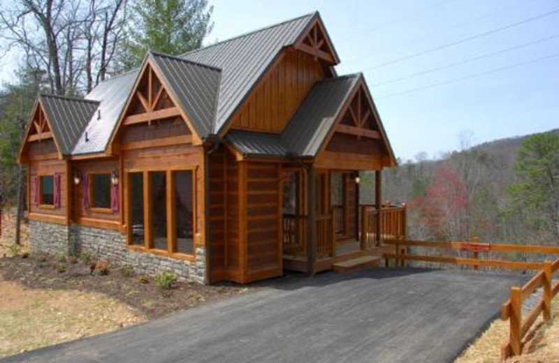 Pigeon Forge Vacation Rentals - - Brand New 1-Bedroom, 1 ...