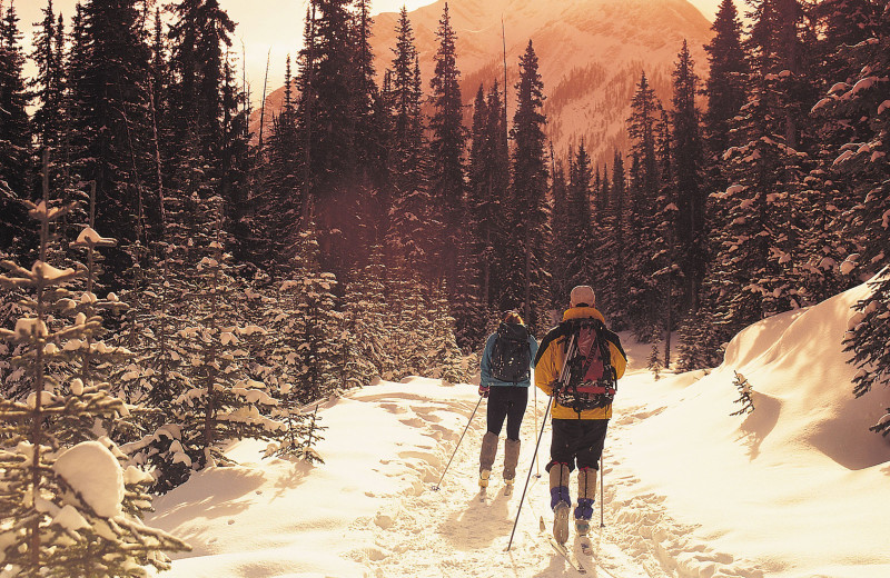 Cross country skiing at Banff Rocky Mountain Resort.