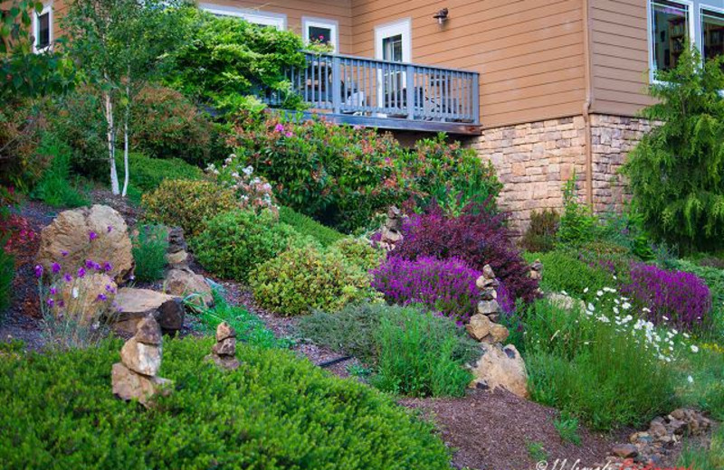 Exterior landscaping at Redwood Coast Vacation Rentals.