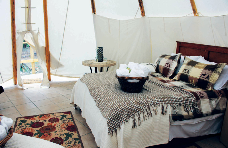 Guest tent at YD Guest Ranch.