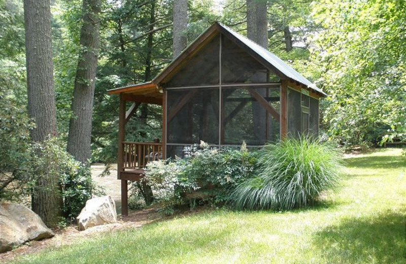 Screened Deck located on the banks of the Toccoa River
