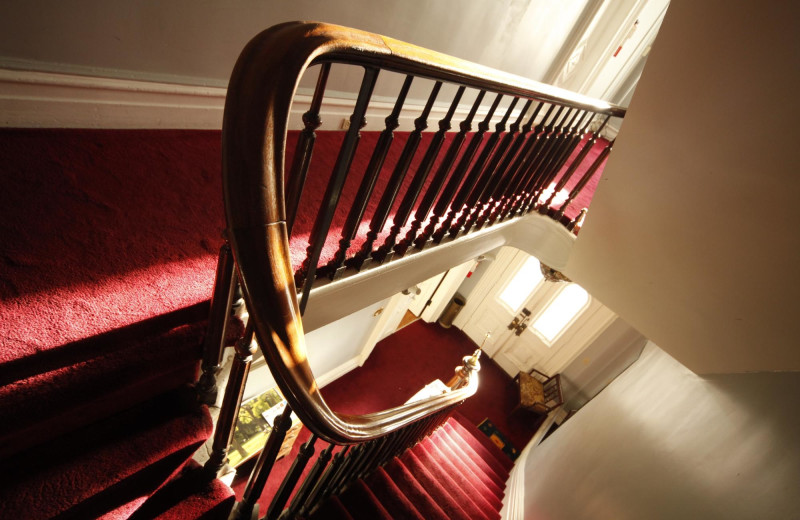 Stairs at Hudson City Bed & Breakfast.