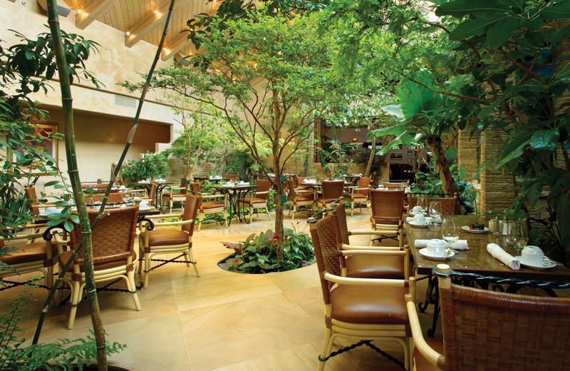 Patio dining at El Monte Sagrado.