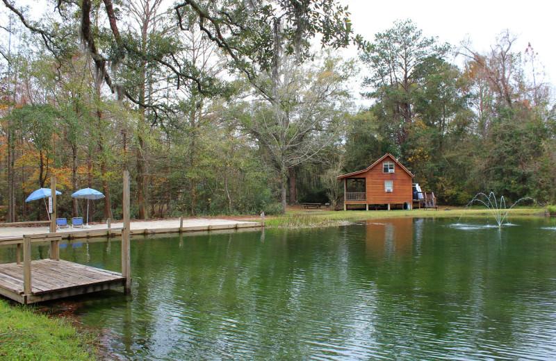 Lake view at Berry Creek Cabins.