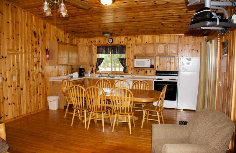 Cabin kitchen at Bear Paw Resort.