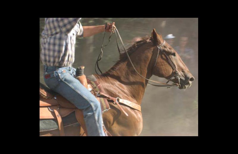 Horseback riding at Rimrock Dude Ranch.