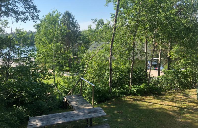 Cabin view at Dogtooth Lake Resort.