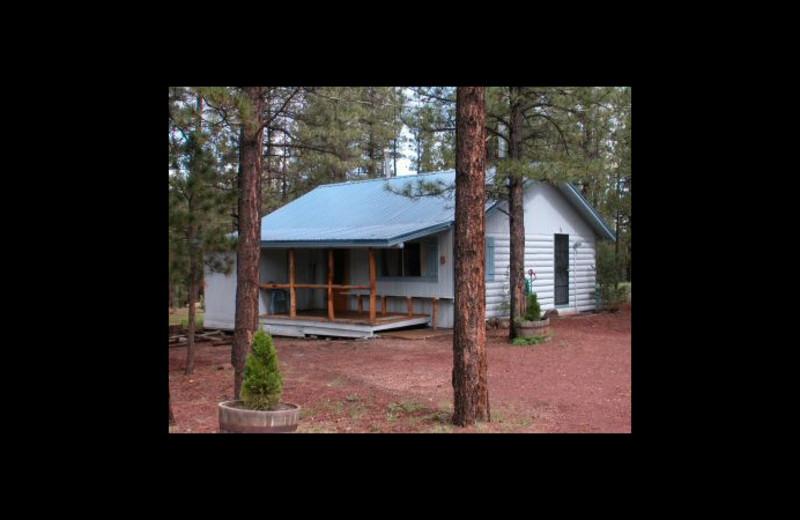Cabin exterior at Greer Mountain Resort.