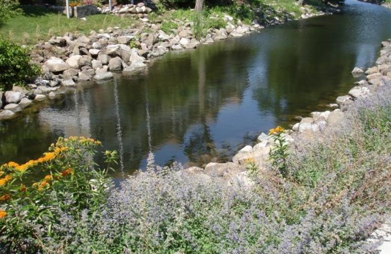 River at Harbor Shores.