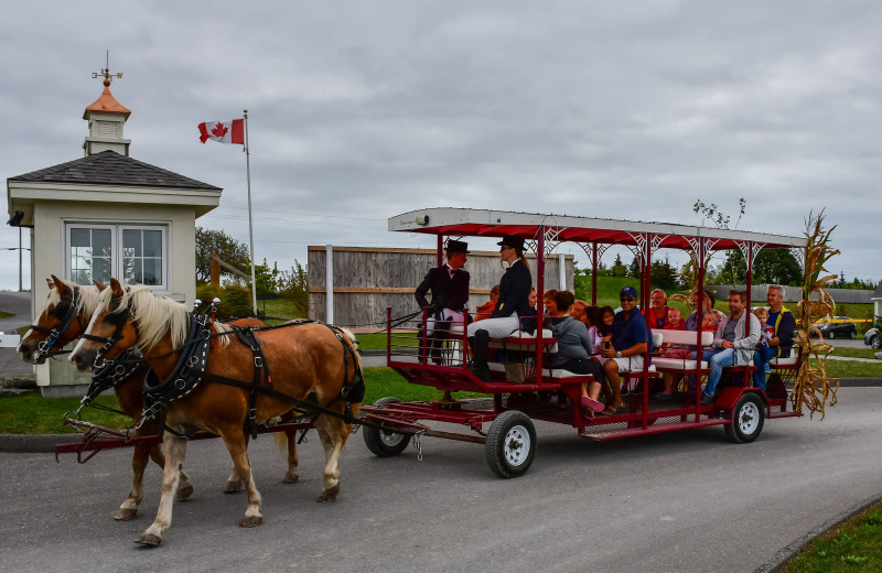 Horse wagon at Sandbanks Summer Village Cottage Resort.