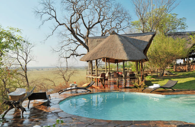 Outdoor pool at Muchenje Safari Lodge.