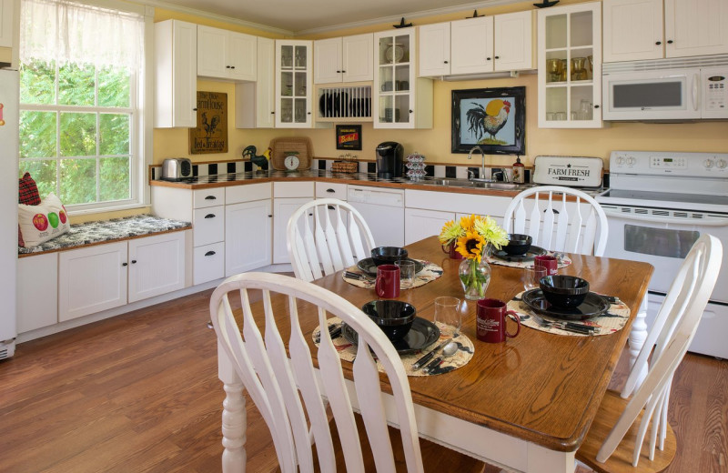 Kitchen at Orchard House Bed & Breakfast.