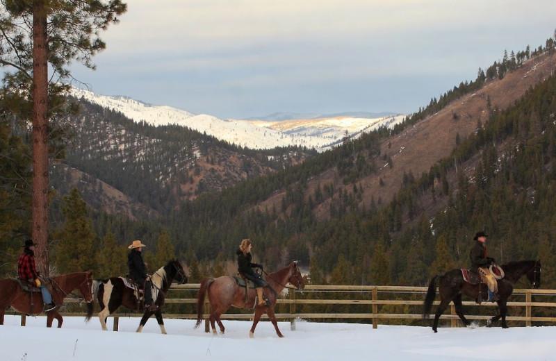 Horseback riding at Triple Creek Ranch.