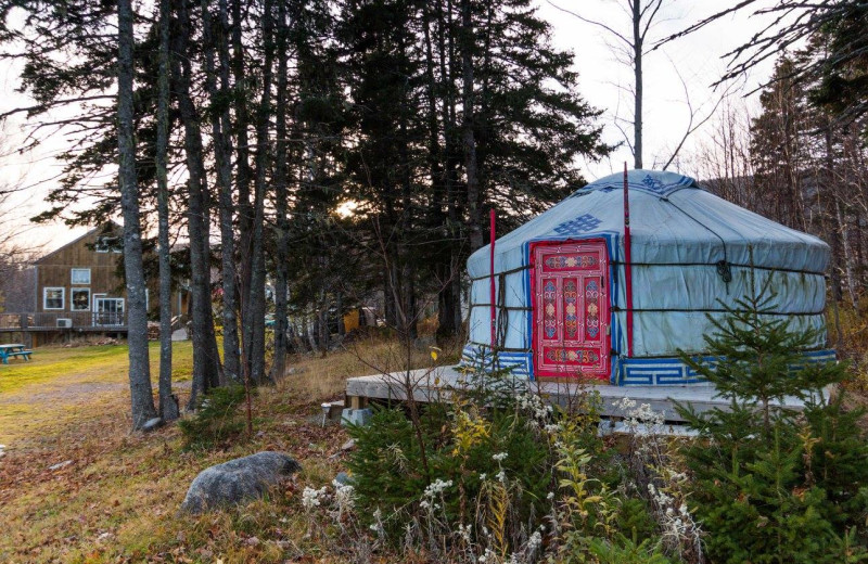 Yurt exterior at Cabot Shores Wilderness Resort.