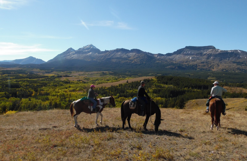 Horseback riding at Bear Creek Ranch.