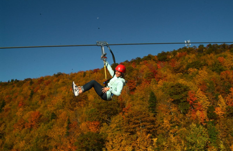 Zip line near Hammo's Lodge.