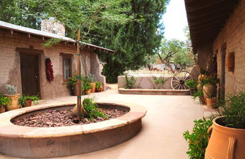 Beautiful outdoor courtyards and spaces for relaxing and enjoyment
