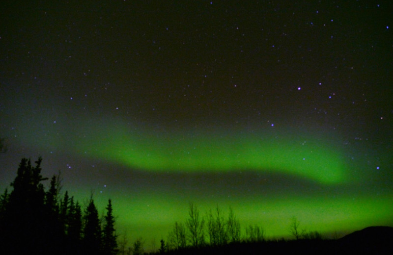 Aurora at Gwin's Lodge & Kenai Peninsula Charter Booking Service.