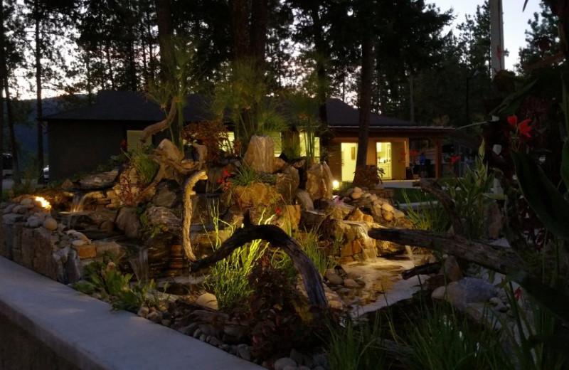 Night time at Powers Creek Retreat.