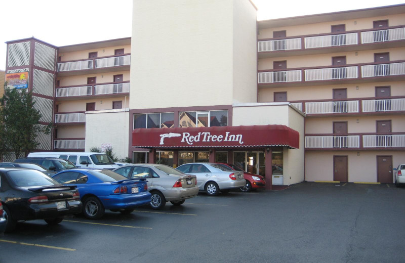 Exterior view of Red Tree Inn Ocean Front.