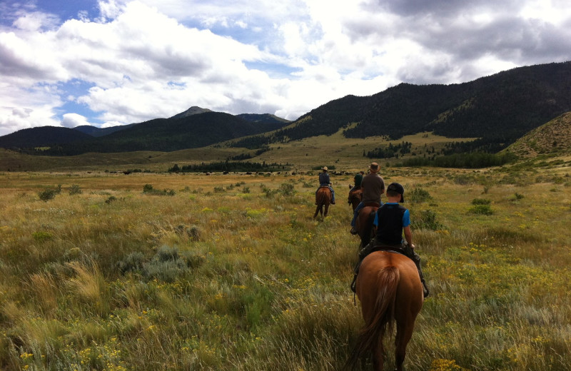 Horseback riding at Music Meadows Ranch.