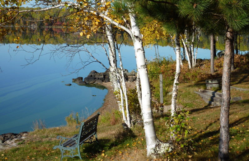 View of Birch Lake at River Point Resort & Outfitting Co.