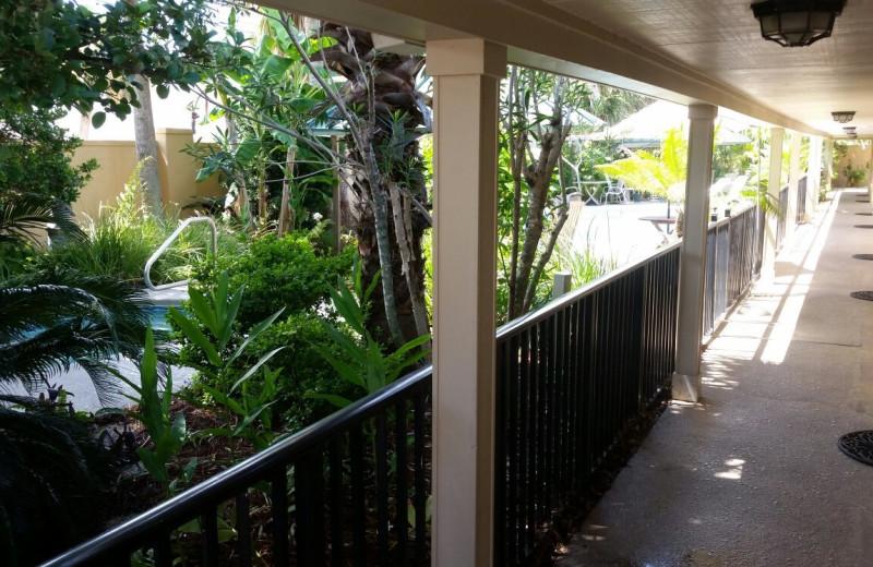 Porch at Wisteria Inn.