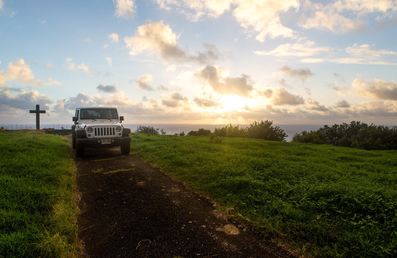 Island drive at Travaasa Hana.
