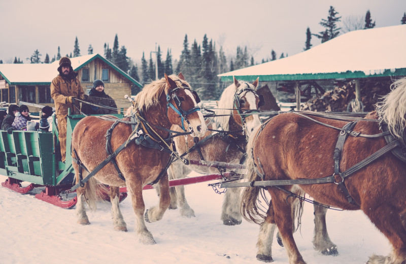 Sleigh ride at Falcon Beach Ranch.