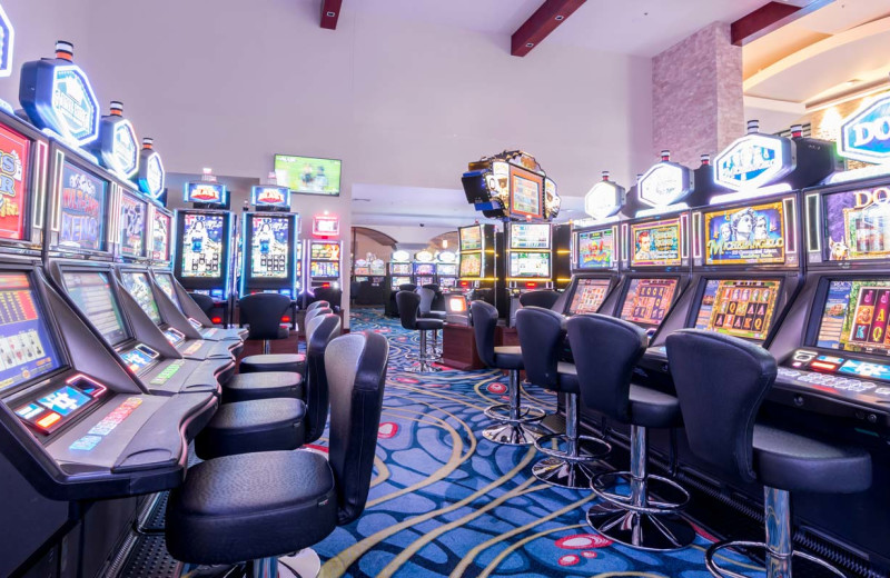 Slot machines at Croc's Resort & Casino.