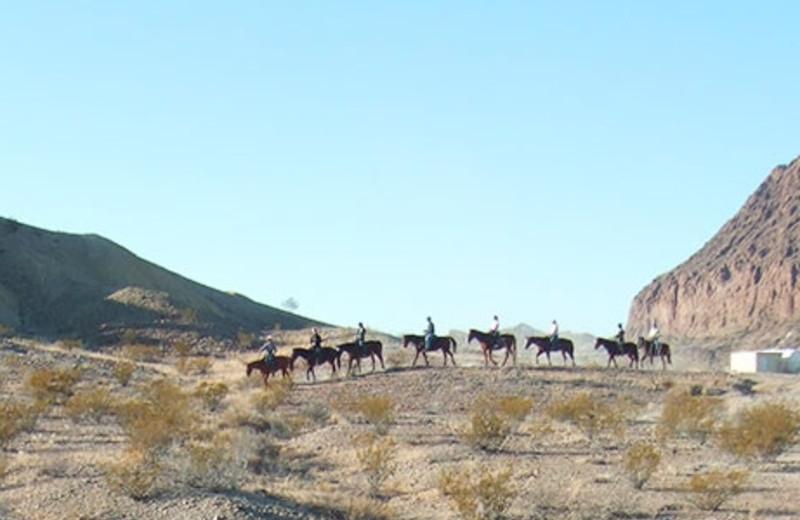 Horseback Riding at Big Bend Overland Tours