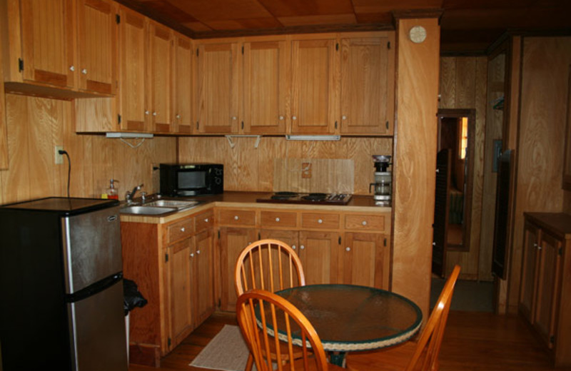 Cabin kitchen at The Exotic Resort Zoo.