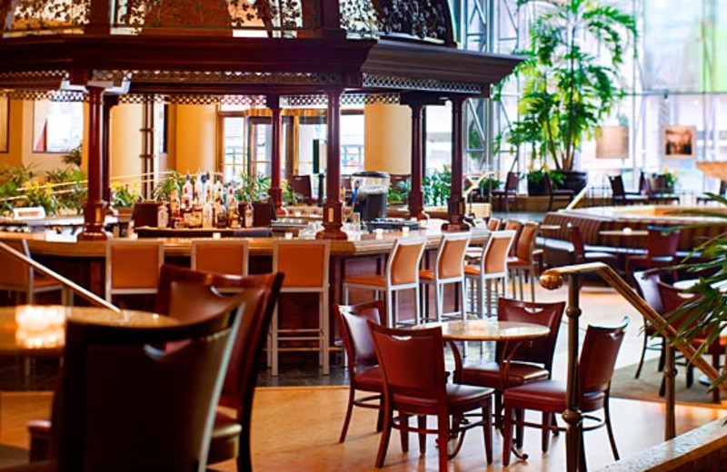 Restaurant View at Sheraton New Orleans Hotel