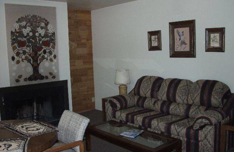 Cabin living room at Buck Springs Resort.
