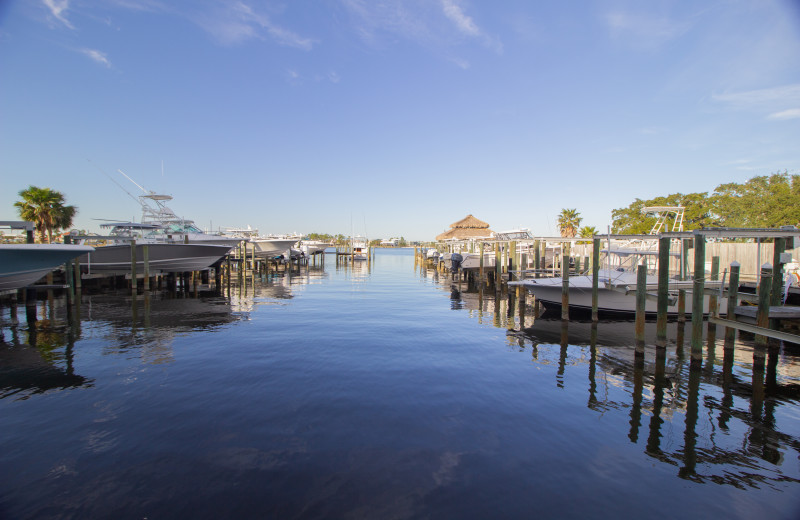 Rental marina at Paradise Gulf Properties.