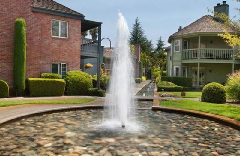 Fountain view at Vintage Inn.