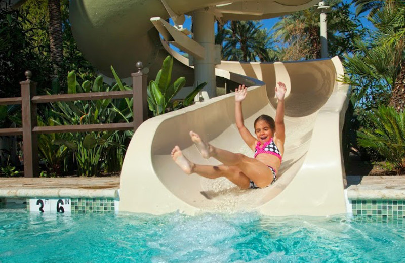 Water slide at The Wigwam Resort.