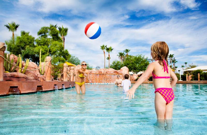 Outdoor pool at Arizona Grand Resort.