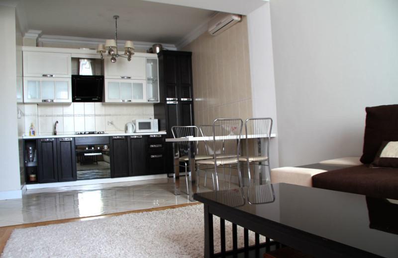 Apartment kitchen at Chisinau apartments.