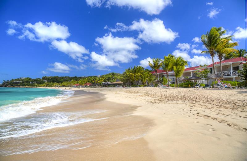 Beach at Galley Bay Resort & Spa.