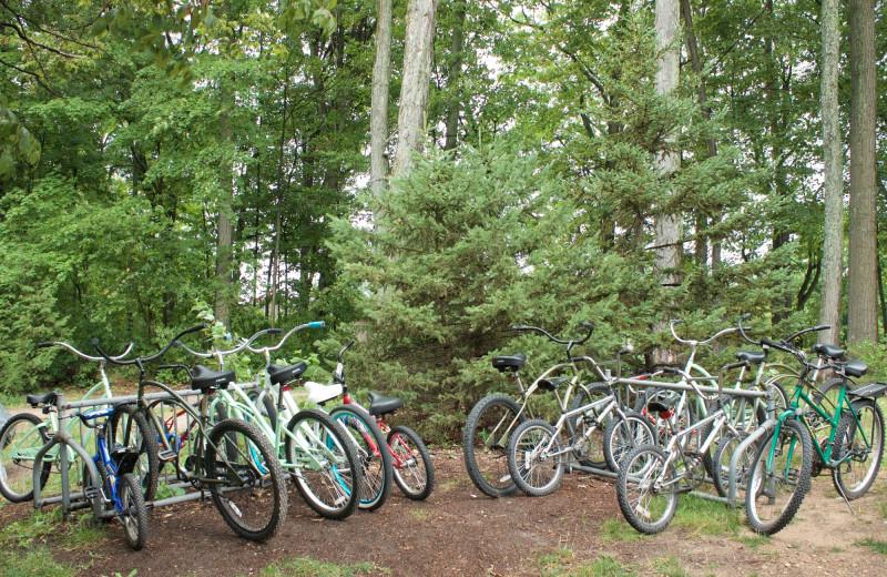 Bikes at White Birch Lodge.