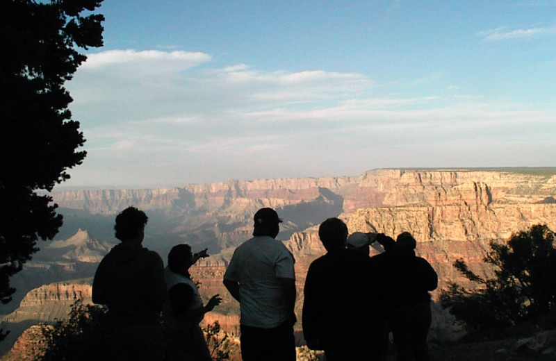 Viewing Grand Canyon at Grand Canyon Under Canvas.