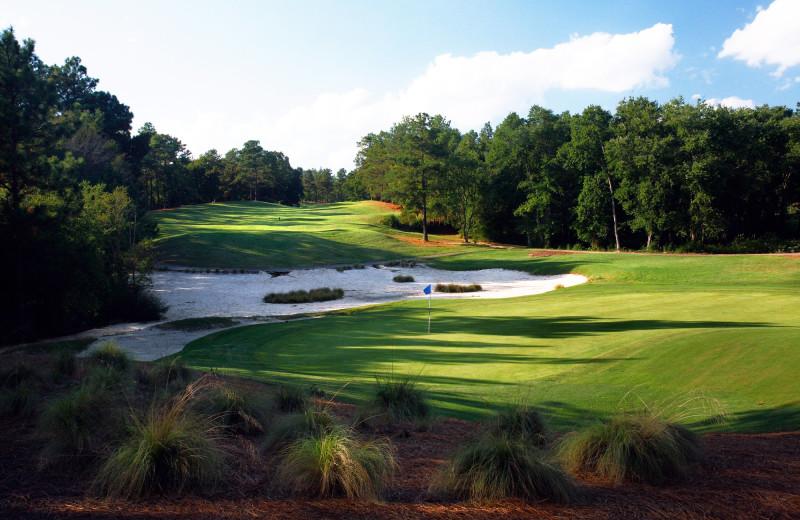 Golf course at Sandhills Rentals.