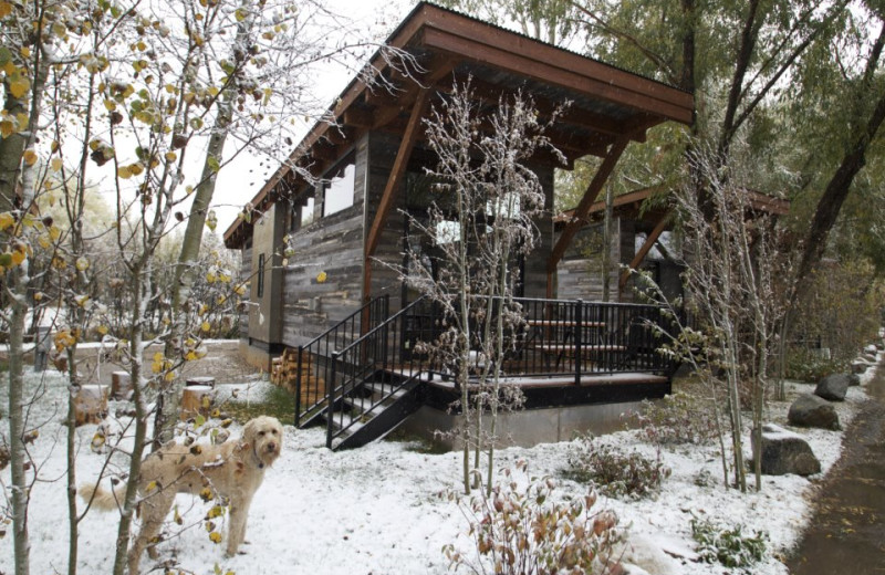 Cabin in Winter at Fireside Resort