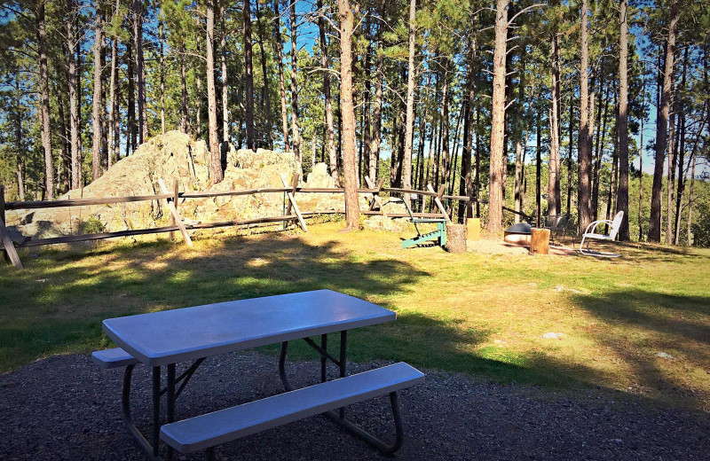 Cabin picnic area at Silver Mountain Resort and Cabins.