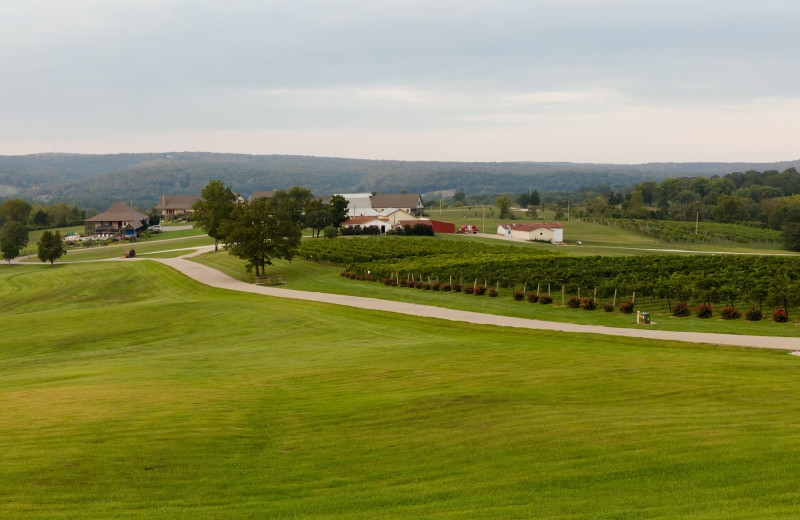 Exterior view of Chaumette Vineyards
