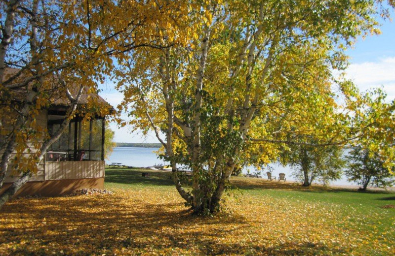 Cabin at Jessica Lake Lodge.