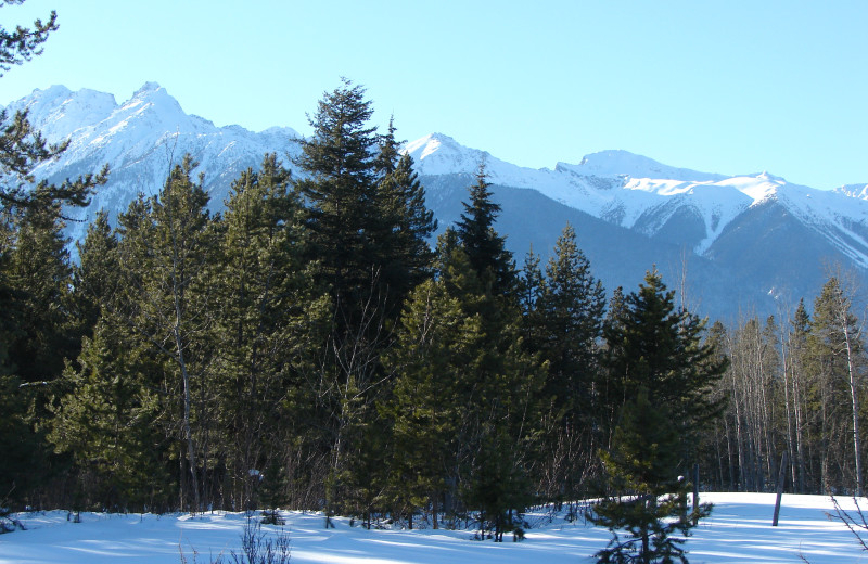a view during the winter from the Pine cabin, Mica Mountain Lodge & log cabins
