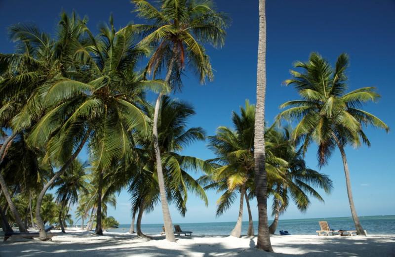 Exclusive Florida Keys Oasis