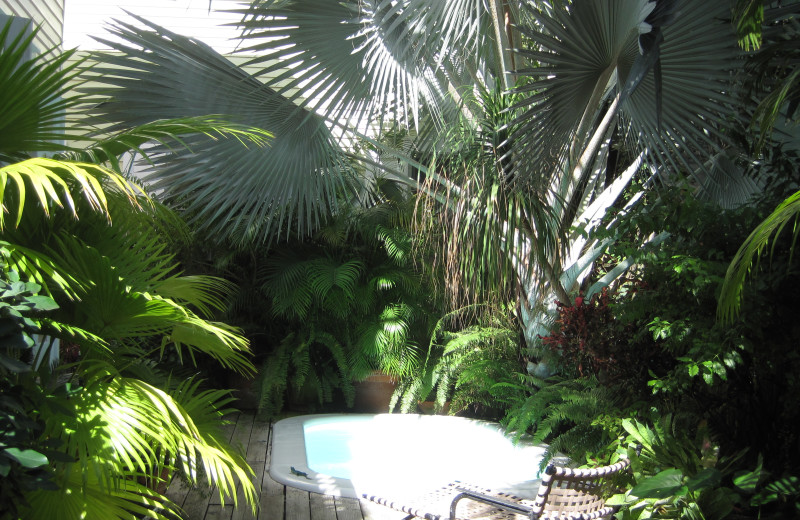 Hot tub at Key West Bed & Breakfast.